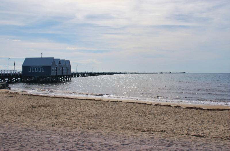Delfiinien bongailua Länsi-Australian rannikolla