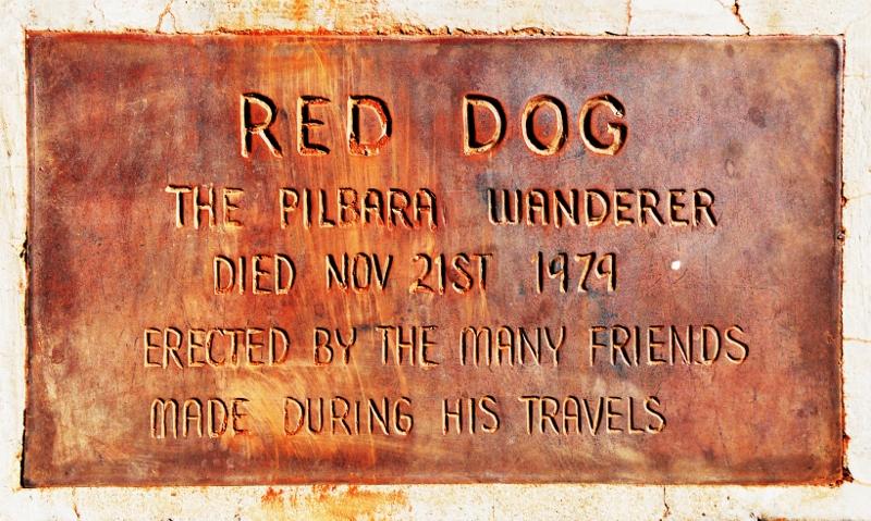 Dampierin punainen koira