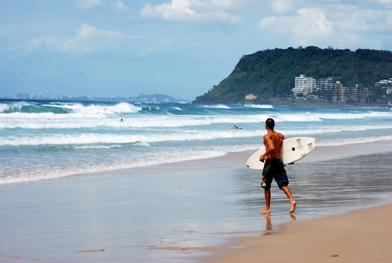 Surffari Gold Coastilla