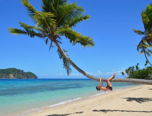Paradise Cove, Fidzin paratiisipoukama