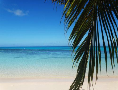 Fidzin Sininen laguuni, osa II