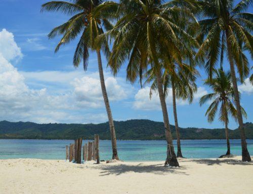 Taon matkassa Coronilta Palawanille, osa V