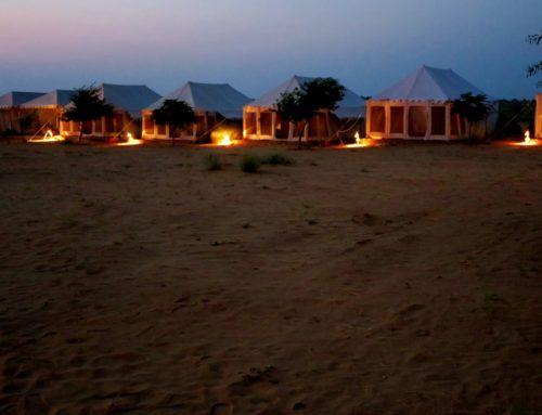 Luksustelttailua ja kamelisafari Jaisalmerin aavikolla