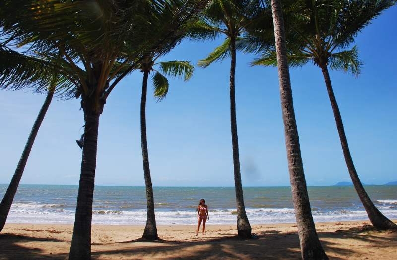 Palm Cove, Cairns