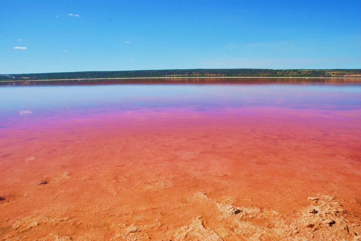 Pinkki järvi Australiassa