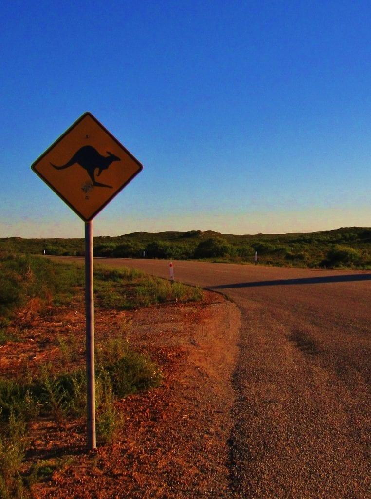 Australian road trip campervanilla