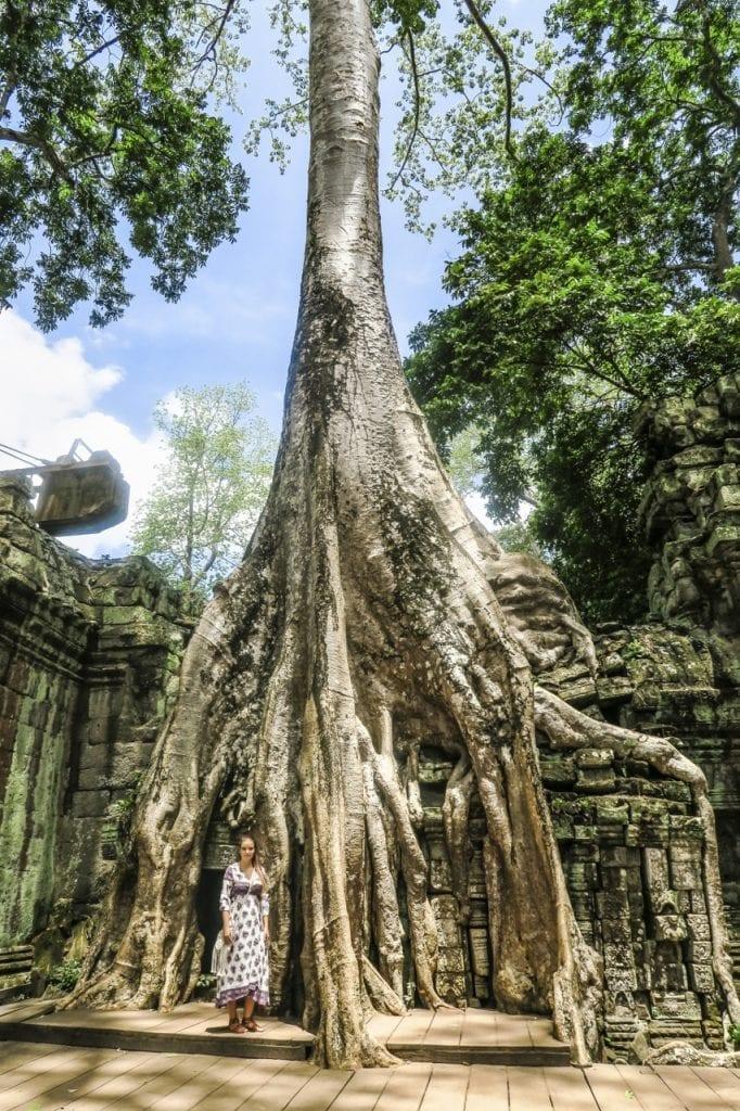 Ta Phrom Kambodza