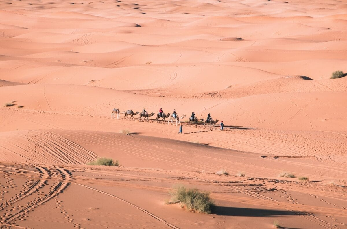 kamelikaravaani Saharassa
